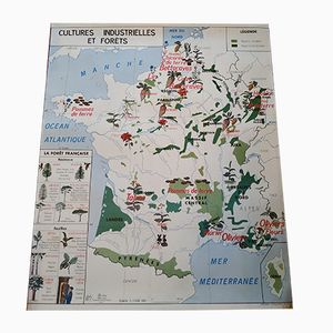Double-Sided Geography Map of the Garonne and the Industrial and Forest Culture, 1960s