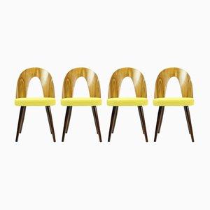 Vintage Stühle aus Nussholz von Antonin Suman für Tatra, 1960er, 4er Set
