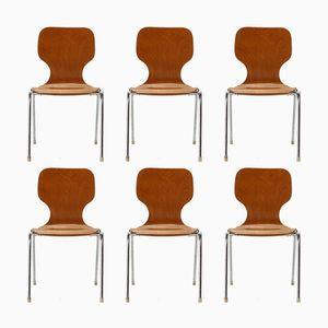 Chaises Empilables en Contreplaqué, 1960s, Set de 6