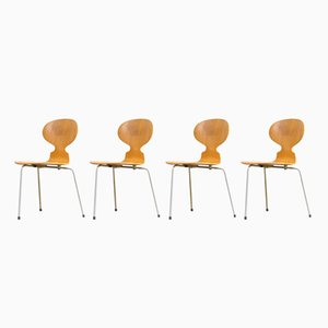 Sedie Ant nr. 3100 di Arne Jacobsen per Fritz Hansen, anni '50, set di 4