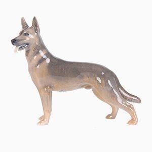 Vintage Modell 3261 deutscher Schäferhund von Th. Madsen Bing & Grondahl