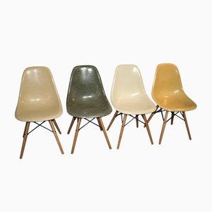Chaises DSW en Fibre de Verre par Charles & Ray Eames pour Herman Miller, Set de 4