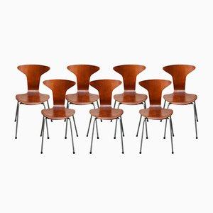 Sillas Mosquito moelo 3105 de Arne Jacobsen para Fritz Hansen, 1967. Juego de 7