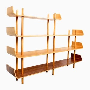 Shelving Unit by Willem Lutjens for Gouda den Boer, 1950s