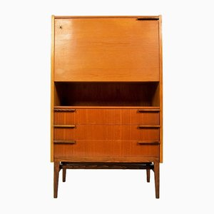 Mid-Century Czech Secretaire by František Mezulánik for UP Závody, 1960s