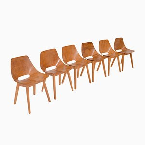 Tonneau Chairs by Pierre Guariche for Steiner, 1950s, Set of 6