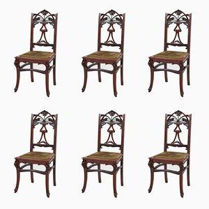 Französische Jugendstil Stühle aus Mahagoni, 1900er, 6er Set