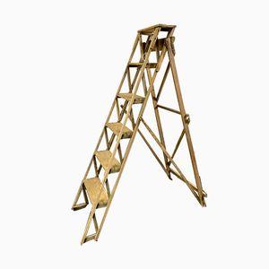 Vintage Regal / Leiter aus Holz, 1960er