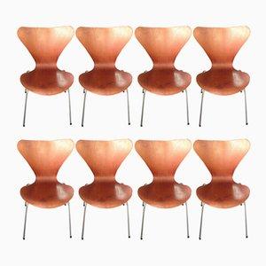 Beistellstühle aus Teak von Arne Jacobsen, 1950er, 8er Set