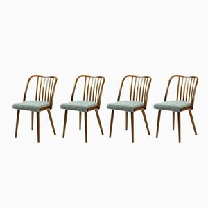 Vintage Bentwood Chairs from TON, 1960s, Set of 4