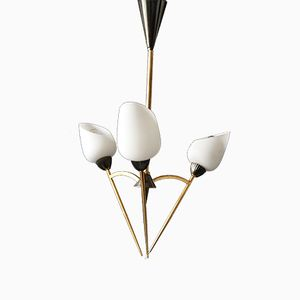 Mid-Century French Chandelier from Arlus, 1950s