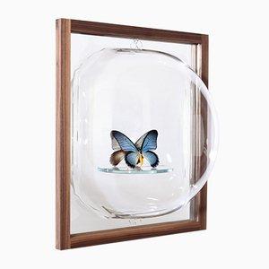 Miroir Bubble Showcase avec Étagère en Verre et Cadre en Frêne par Studio Thier & van Daalen