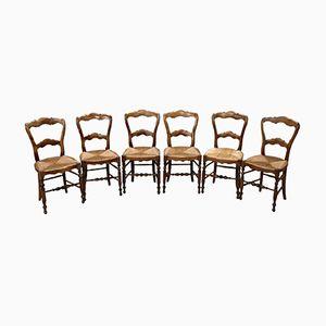 Stühle aus Nussholz, 1850er, 6er Set