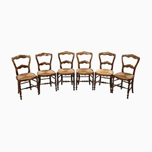 Walnut Chairs, 1850s, Set of 6