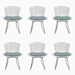 Side Chairs by Harry Bertoia for Knoll, 1970s, Set of 6