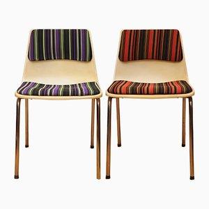 Vintage Stühle von Robin Day für Hille, 2er Set