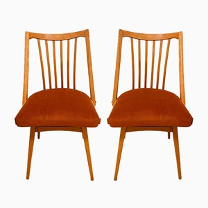 Dining Chairs by Antonin Suman for Jitona, 1960s, Set of 2