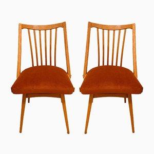 Esszimmerstühle von Antonin Suman für Jitona, 1960er, 2er Set