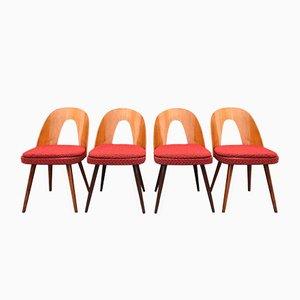 Tschechische Mid-Century Esszimmerstühle von Antonin Suman für Tatra, 4er Set