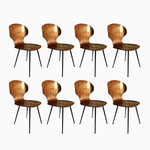 Mid-Century Lulli Wooden Dining Chairs by Carlo Ratti for Industria Legni Curvati, 1956, Set of 8