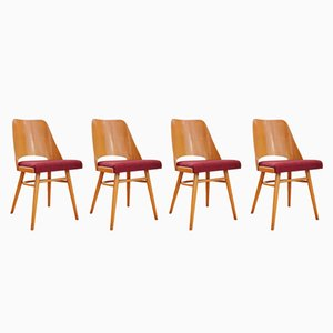 Chaises de Salle à Manger N°514 Tchécoslovaques par Radomir Hofman pour TON, 1964, Set de 4