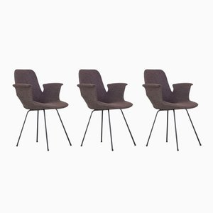 Medea Chairs by Vittorio Nobili for Fratelli Tagliabue, 1950s, Set of 3