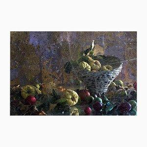 Corbeille à Fruits Vertigo par AnnaLeaClelia Tunesi, 2017