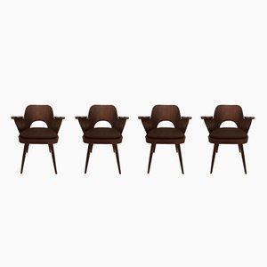 Sedie vintage di Oswald Haerdtl per TON, anni '50, set di 4
