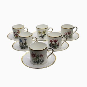 Vintage Porcelain Alpine Coffee Set from Royal Worcester, 1980s