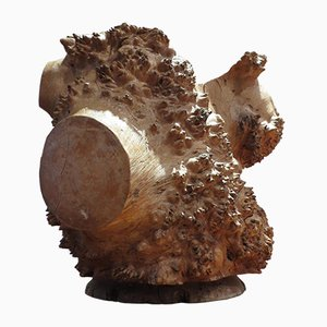 Large Burr Elm Root Wood Brush Pot, 1980s