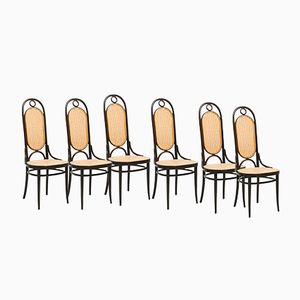 207R Chairs by Michael Thonet for Thonet, 1979, Set of 6