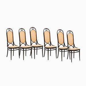 207R Stühle von Michael Thonet für Thonet, 1979, 6er Set