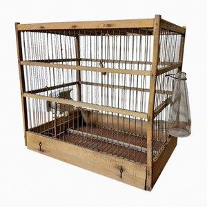 Gabbia per uccelli vintage, anni '20