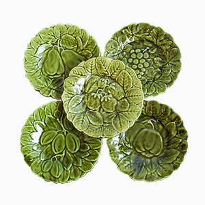 Vintage Faience Majolica Plates from Sarreguemines, 1930s, Set of 5