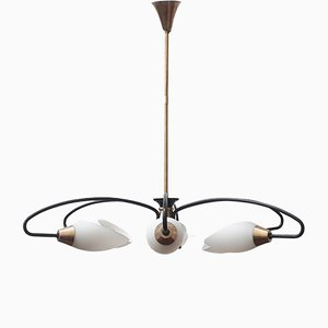Lámpara de araña francesa Mid-Century de Maison Arlus, años 50