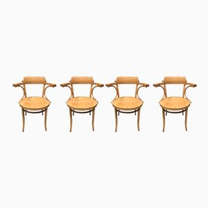 Norm Selection Chairs from Thonet, 1970s, Set of 4