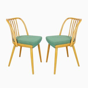 Dining Chairs by Antonín Šuman for TON, 1960s, Set of 2