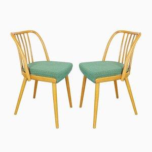 Dining Chairs by Antonín Šuman for TON, 1960s, Set of 2