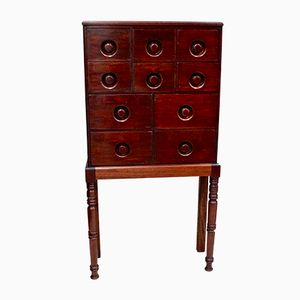 Victorian Mahogany Chemist Apothecary Chests, 1850s, Set of 2