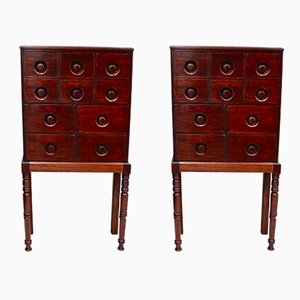 Victorian Mahogany Apothecary Chests, 1850s, Set of 2