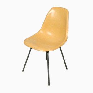 Chaise DSX Vintage en Fibre de Verre Ocre par Charles & Ray Eames pour Herman Miller