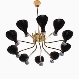 Large Vintage Chandelier by J.J.M. Hoogervorst for Anvia, 1950s