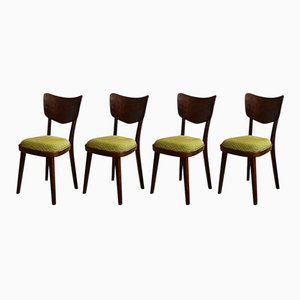 Mid-Century Dining Chairs from Cesky Nabytek, Set of 4