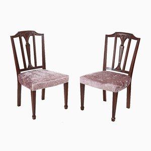 Antike Hepplewhite Beistellstühle aus Mahagoni, 2er Set