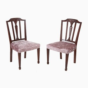 Antique Mahogany Hepplewhite Side Chairs, Set of 2