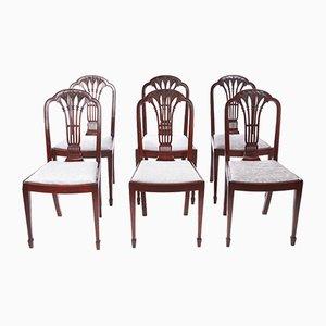 Antike Esszimmerstühle aus Mahagoni, 6er Set