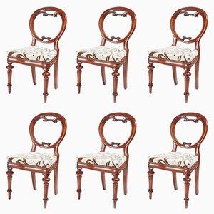 Antike Balloon Back Esszimmerstühle aus Mahagoni, 6er Set