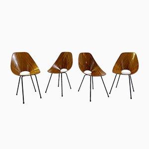Medea Stühle von Vittorio Nobili für Fratelli Tagliabue, 1960er, 4er Set