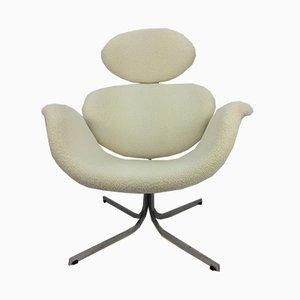 Großer F551 Tulip Stuhl von Pierre Paulin für Artifort, 1950er