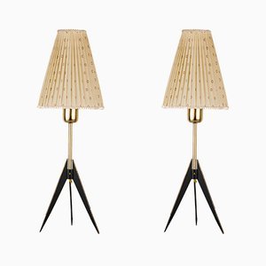 Mid-Century Floor Lamps by J. T. Kalmar, Set of 2